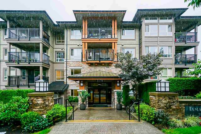 3178 Dayanee Springs Boulevard #217, Coquitlam, BC V3E 0B9 (#R2501637) :: Ben D'Ovidio Personal Real Estate Corporation | Sutton Centre Realty
