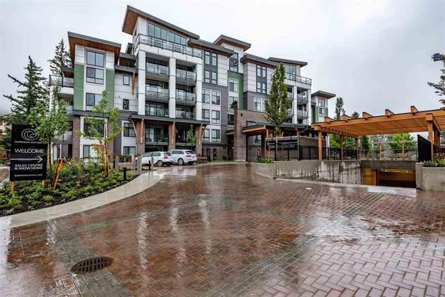 45510 Market Way #604, Chilliwack, BC V2R 6E1 (#R2501669) :: Ben D'Ovidio Personal Real Estate Corporation | Sutton Centre Realty