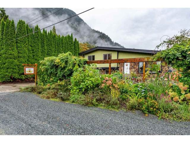 520 Naismith Avenue, Harrison Hot Springs, BC V0M 1K0 (#R2501990) :: Premiere Property Marketing Team