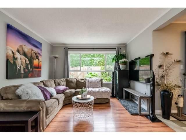 27411 28 Avenue #257, Langley, BC V4W 3V1 (#R2502066) :: Premiere Property Marketing Team