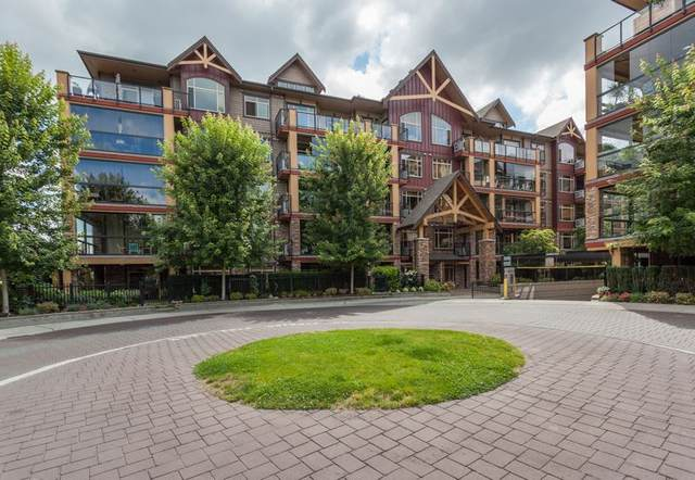 8288 207A Street #585, Langley, BC V2Y 0L2 (#R2502170) :: 604 Realty Group
