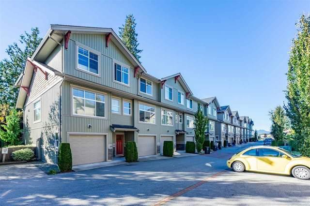 20966 77A Avenue #17, Langley, BC V2Y 0K9 (#R2502526) :: Premiere Property Marketing Team