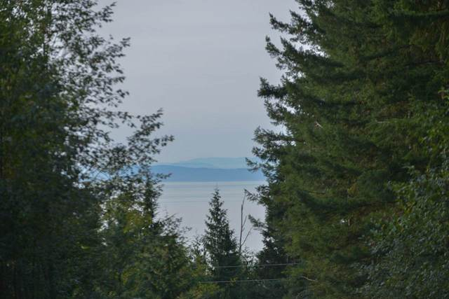 Lot 1 Firburn Road, Roberts Creek, BC V0N 2W5 (#R2504406) :: Initia Real Estate