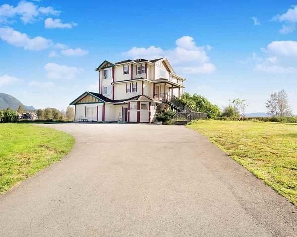 325 Laurier Avenue, Port Coquitlam, BC V3E 3G1 (#R2504419) :: Ben D'Ovidio Personal Real Estate Corporation | Sutton Centre Realty