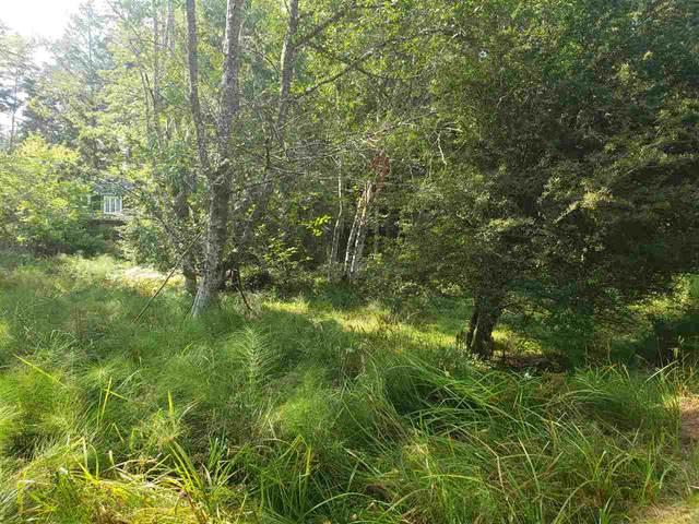 361 Windjammer Place, Mayne Island, BC V0N 2J2 (#R2505002) :: 604 Home Group