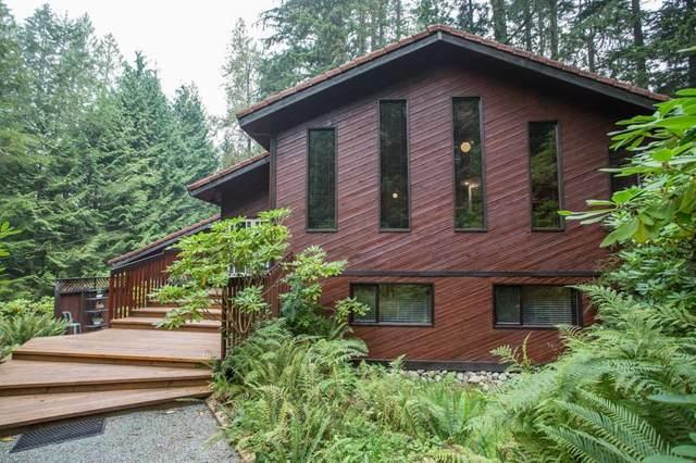 11658 272 Street, Maple Ridge, BC V2W 1N1 (#R2505519) :: Initia Real Estate