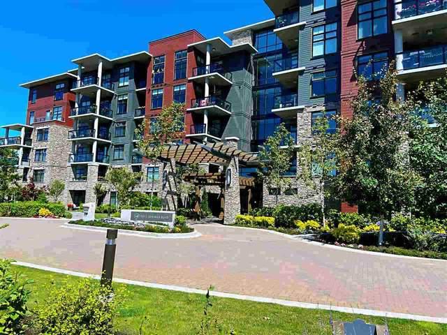 5011 Springs Boulevard #310, Delta, BC V4M 0B6 (#R2505787) :: 604 Home Group