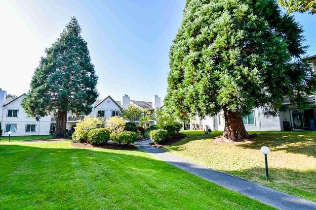 12940 17 Avenue #8, Surrey, BC V4A 1T5 (#R2506956) :: Homes Fraser Valley