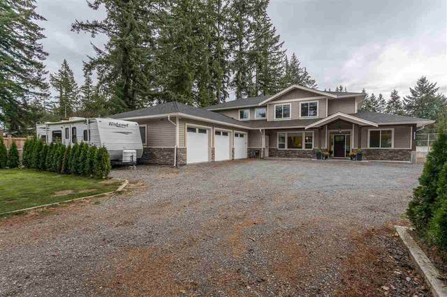 24698 54 Avenue, Langley, BC V2Z 1C7 (#R2507875) :: Initia Real Estate