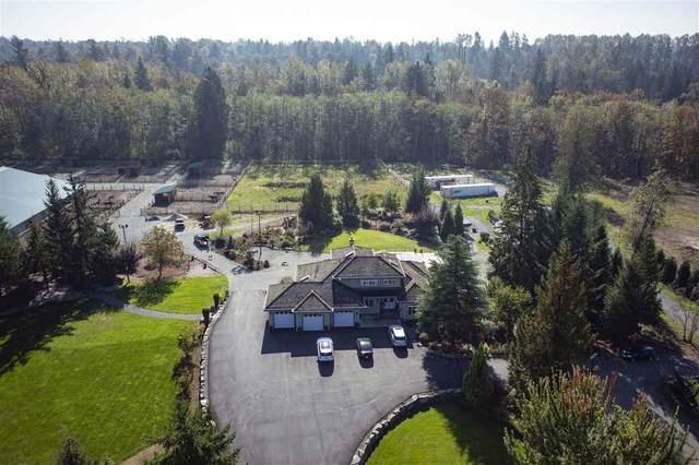 25528 73 Avenue, Langley, BC V4W 1V2 (#R2508522) :: Initia Real Estate
