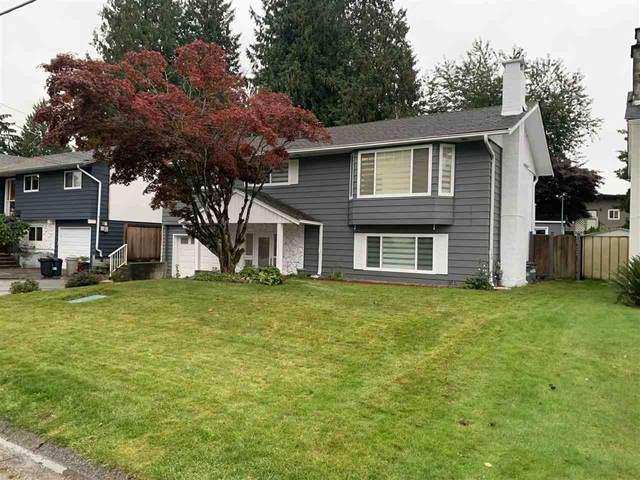 11676 95 Avenue, Delta, BC V4C 3T4 (#R2509277) :: Homes Fraser Valley