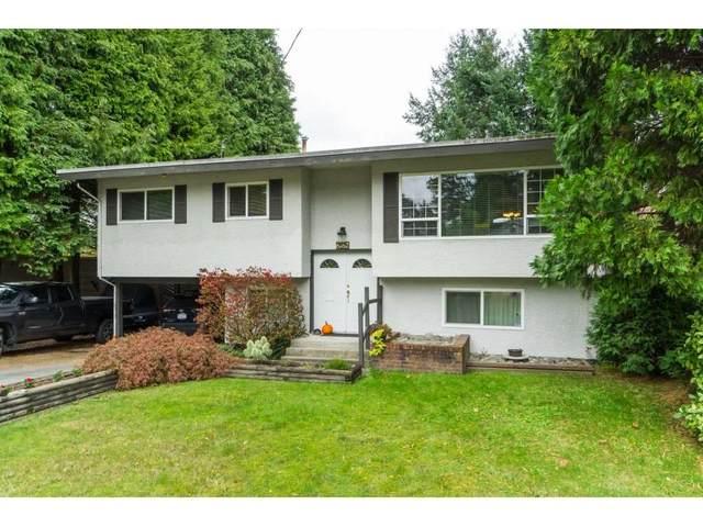 6782 130 Street, Surrey, BC V3W 4J3 (#R2509281) :: 604 Home Group