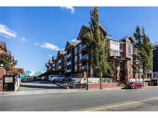 5650 201A Street #315, Langley, BC V3A 0B3 (#R2509283) :: Homes Fraser Valley