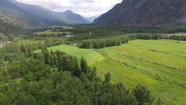 DL 821 Upper Lillooet Forest Service Road, Pemberton, BC V0N 2L0 (#R2509698) :: RE/MAX City Realty