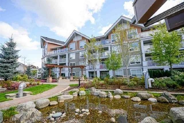 6480 194 Street #201, Surrey, BC V4N 6J9 (#R2509715) :: Homes Fraser Valley