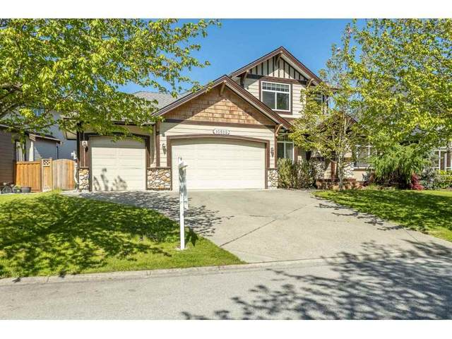 10522 Baker Place, Maple Ridge, BC V2W 2B8 (#R2510829) :: 604 Home Group