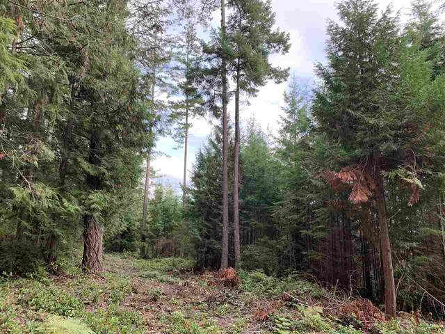 LOT C Acorn Road, Sechelt, BC V0N 3A8 (#R2510920) :: Initia Real Estate