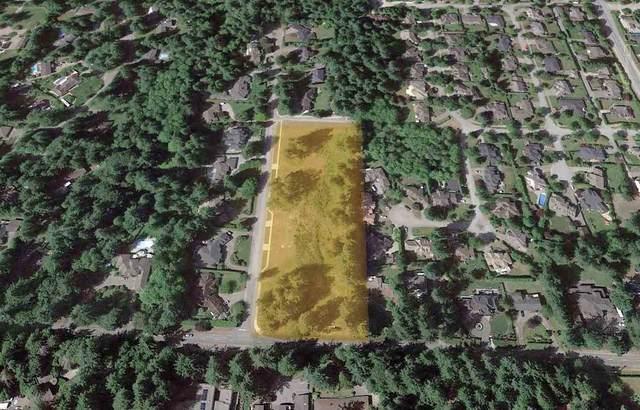 2870 138 Street, Surrey, BC V4P 1T5 (#R2511033) :: Homes Fraser Valley