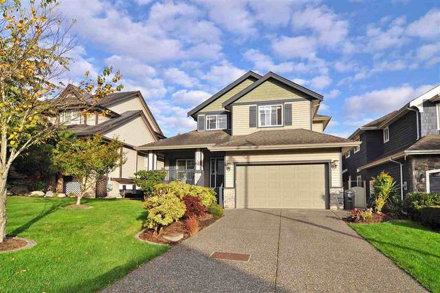 5760 167A Street, Surrey, BC V3S 9T2 (#R2511038) :: 604 Home Group