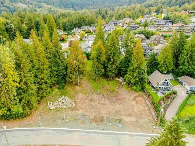 7325 Marble Hill Road, Chilliwack, BC V4Z 1J5 (#R2511563) :: Initia Real Estate