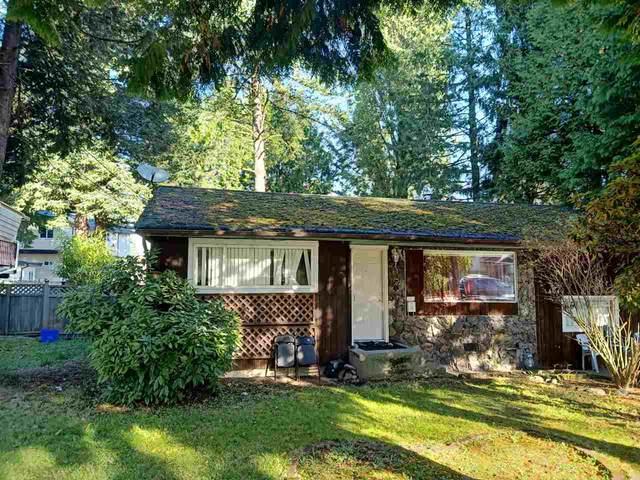 14041 75 Avenue, Surrey, BC V3W 2S9 (#R2511886) :: Initia Real Estate