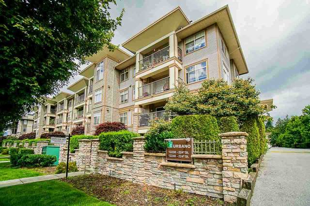 12248 224 Street #419, Maple Ridge, BC V2X 8W6 (#R2511898) :: Homes Fraser Valley