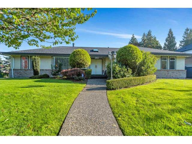 11296 153A Street, Surrey, BC V3R 8Z5 (#R2512149) :: 604 Home Group