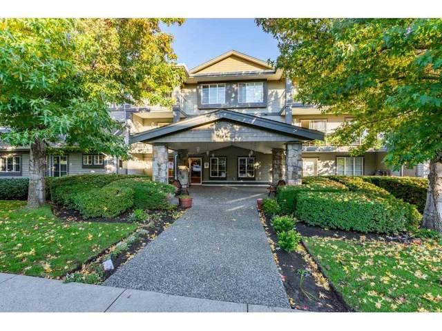 1280 Merklin Street #303, White Rock, BC V4B 4B9 (#R2512350) :: Initia Real Estate