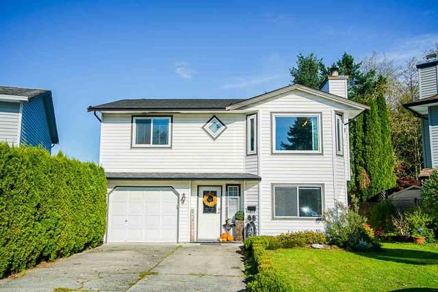 22439 125 Avenue, Maple Ridge, BC V2X 9N8 (#R2512656) :: Initia Real Estate