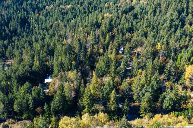 1721 Reid Road, Pemberton, BC V0N 2K0 (#R2512733) :: 604 Home Group
