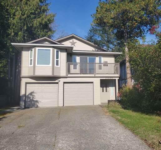 19489 115A Avenue, Pitt Meadows, BC V3Y 1R5 (#R2513043) :: Initia Real Estate