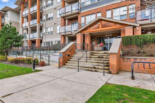 20219 54A Avenue #315, Langley, BC V3A 0C7 (#R2513344) :: RE/MAX City Realty