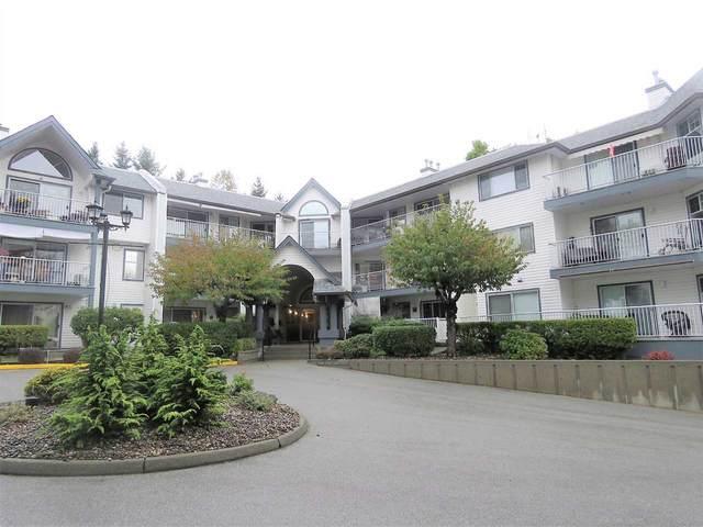 11601 227 Street #114, Maple Ridge, BC V2X 0J7 (#R2513688) :: Ben D'Ovidio Personal Real Estate Corporation | Sutton Centre Realty