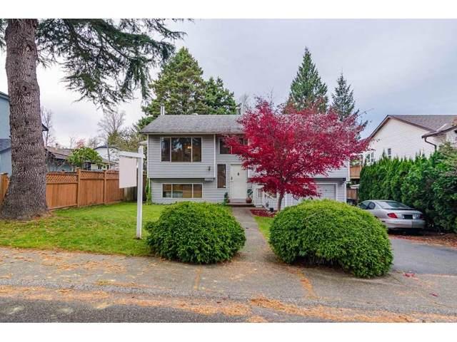 27339 32A Avenue, Langley, BC V4W 3H9 (#R2516733) :: Premiere Property Marketing Team