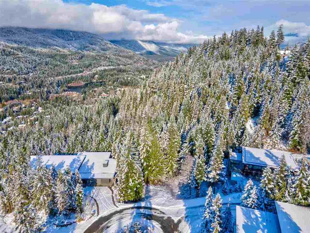 2938 Heritage Peaks Trail, Whistler, BC V8E 0L6 (#R2517744) :: RE/MAX City Realty