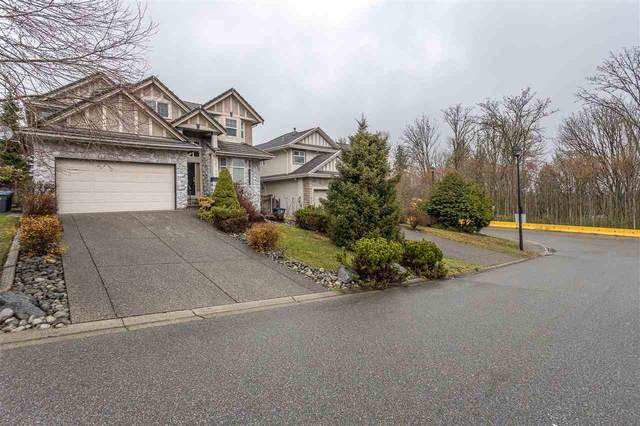16743 109 Avenue, Surrey, BC V4N 5H6 (#R2518731) :: Premiere Property Marketing Team