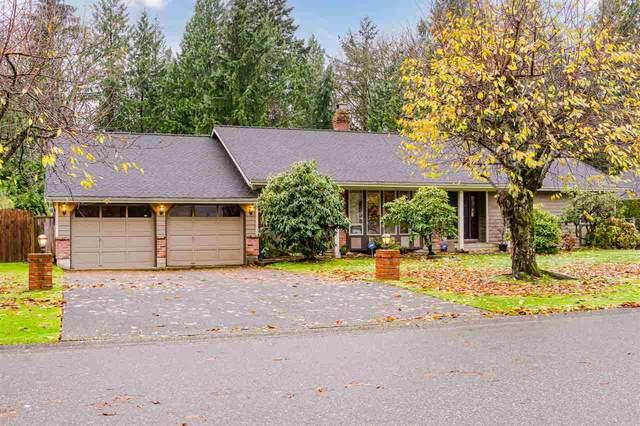 11281 153A Street, Surrey, BC V3R 6H9 (#R2519107) :: Premiere Property Marketing Team