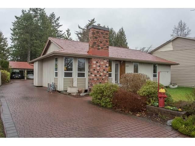 11757 231 Street, Maple Ridge, BC V2X 6S1 (#R2519885) :: Premiere Property Marketing Team