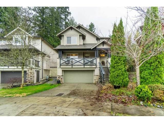 10359 243 Street, Maple Ridge, BC V2W 2C7 (#R2519997) :: Premiere Property Marketing Team