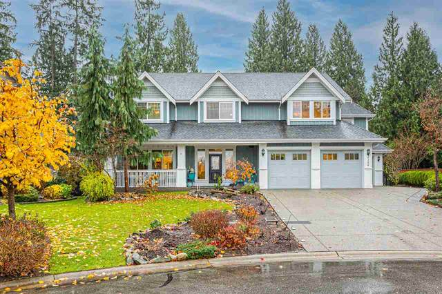 9304 205 STREET Street, Langley, BC V1M 1B8 (#R2520095) :: Premiere Property Marketing Team
