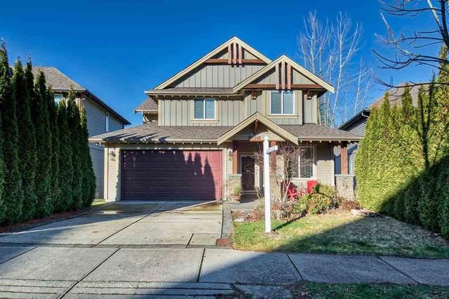 23175 Gilbert Drive, Maple Ridge, BC V4R 0C3 (#R2520486) :: RE/MAX City Realty