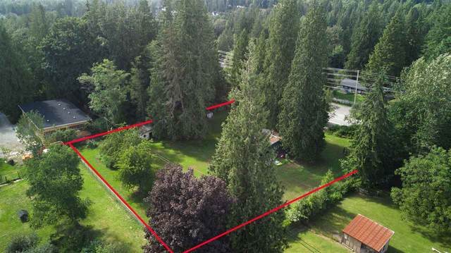 26740 Dewdney Trunk Road, Maple Ridge, BC V2W 1N9 (#R2520487) :: RE/MAX City Realty