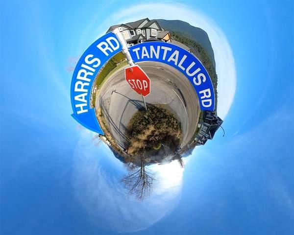Harris Road, Squamish, BC V0N 1T0 (#R2522514) :: 604 Home Group