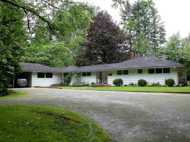 24069 110 Avenue, Maple Ridge, BC V2W 1H7 (#R2528177) :: Premiere Property Marketing Team