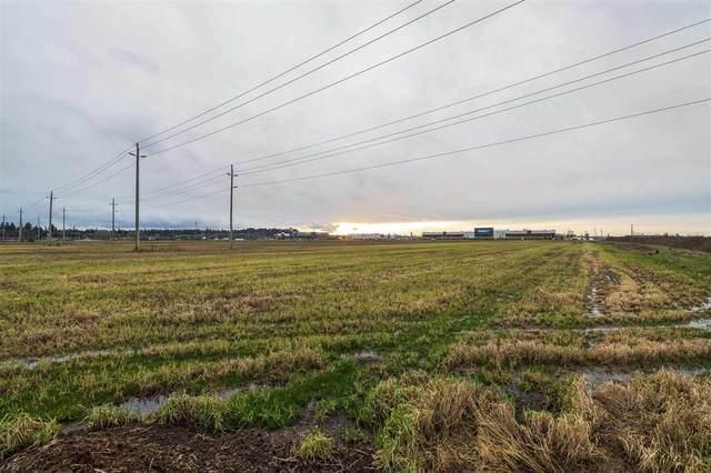 2150 52 Street, Delta, BC V4M 4G8 (#R2528440) :: Ben D'Ovidio Personal Real Estate Corporation | Sutton Centre Realty