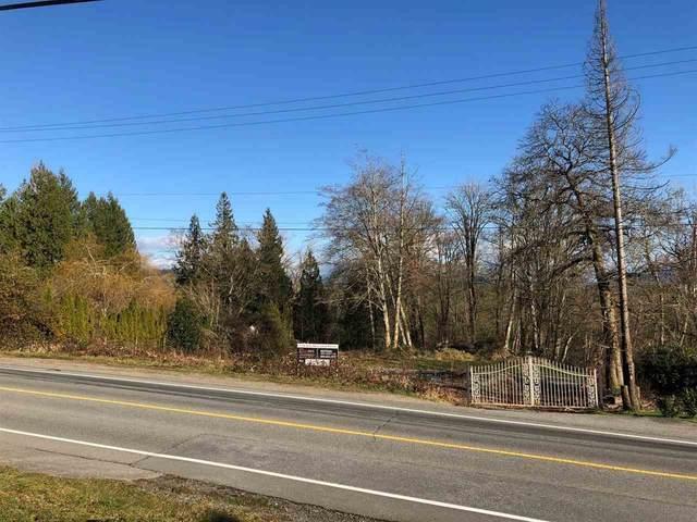 9960 272 Street, Maple Ridge, BC V2W 1R1 (#R2529858) :: Macdonald Realty