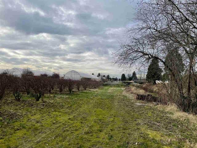 18621 Ford Road, Pitt Meadows, BC V3Y 0A5 (#R2531411) :: Macdonald Realty
