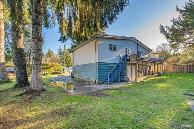 9841 127A Street, Surrey, BC V3V 5L1 (#R2531555) :: RE/MAX City Realty