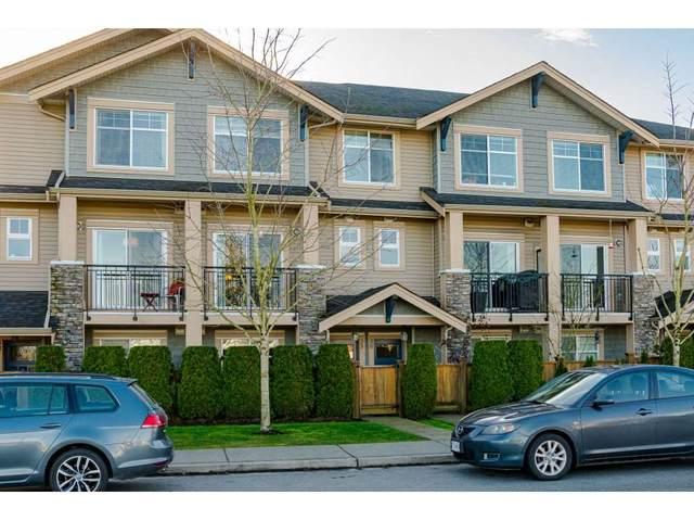20966 77A Avenue #35, Langley, BC V2Y 0K9 (#R2531639) :: RE/MAX City Realty