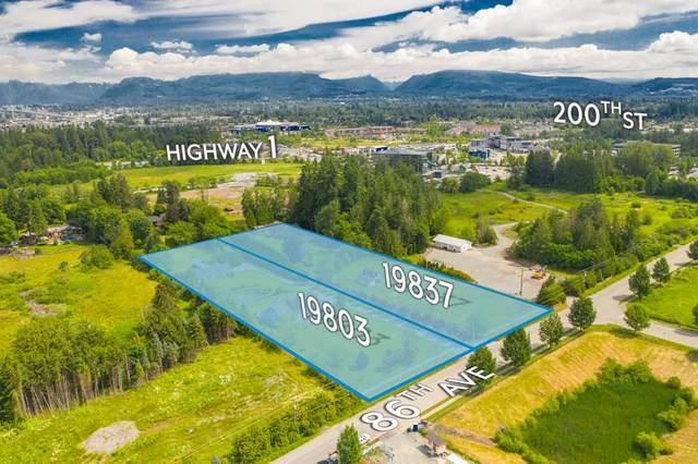 19803 86 Avenue, Langley, BC V2Y 1Z6 (#R2531962) :: RE/MAX City Realty